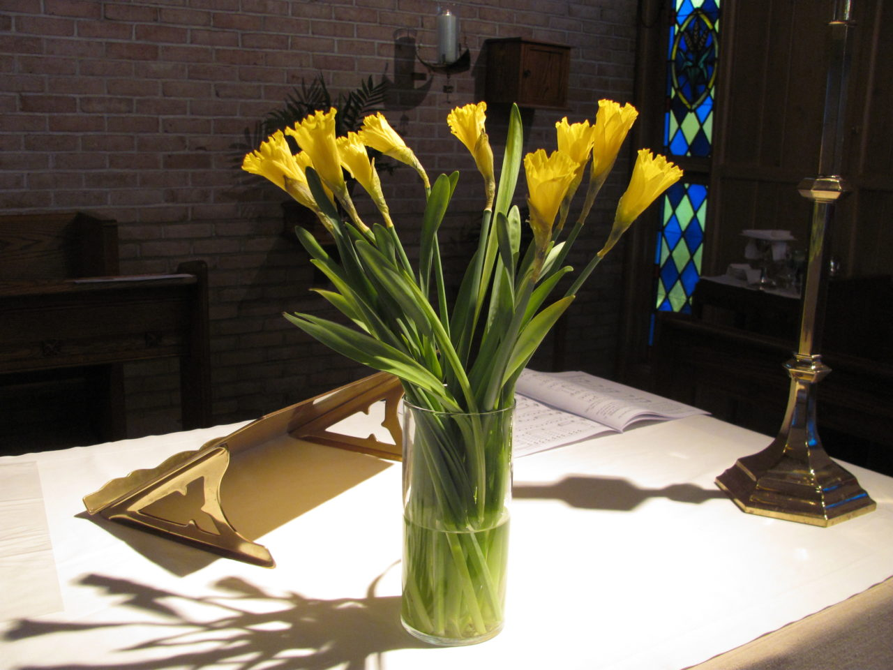 St. David's Day celebrated